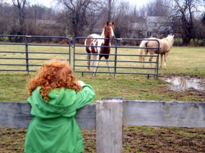 Hannah wanted to meet Snickers and his pasture-mate.