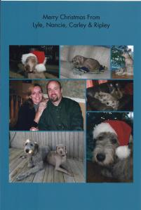 photo collage sent out with Christmas cards.